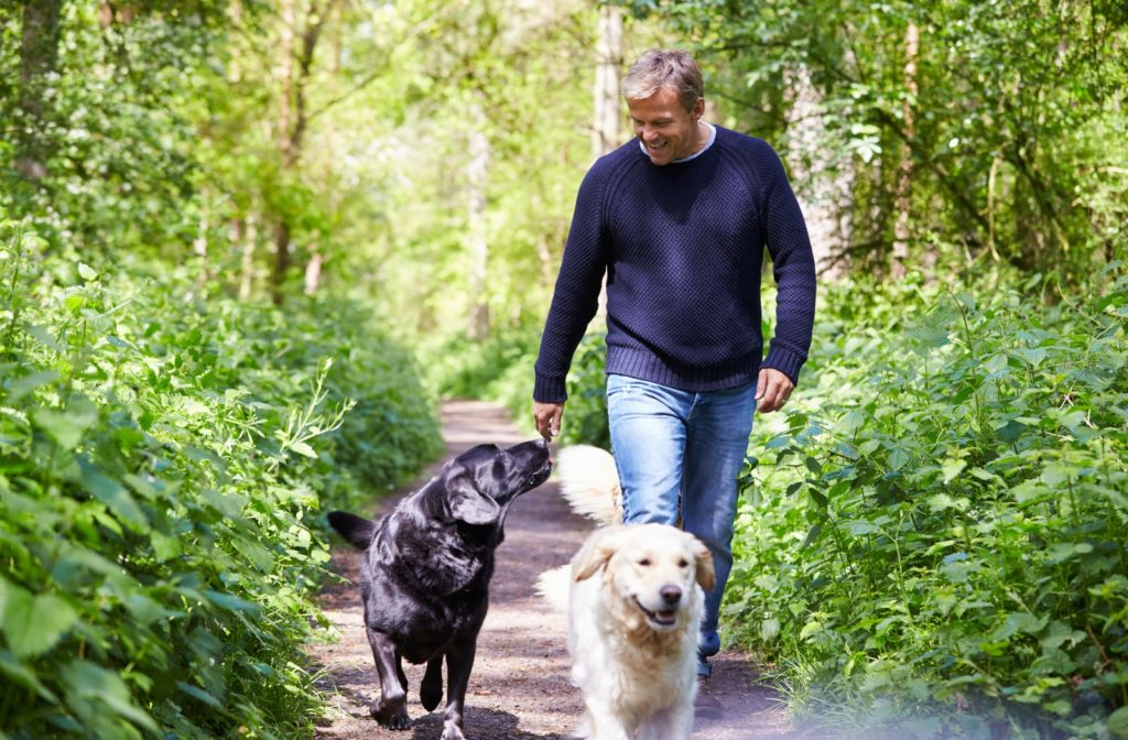 Person walking 2 dogs for physical activity to help with addiction recovery